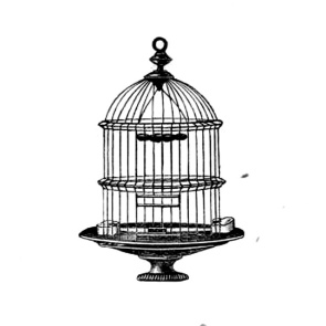 bird-cage-clip-art-my8cqz-clipart