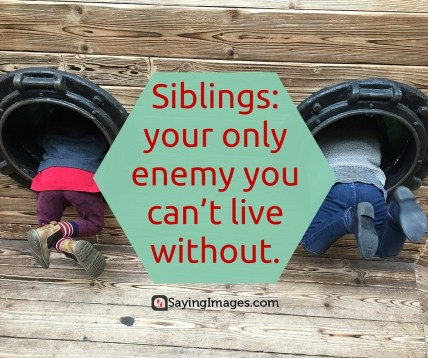 1485722903_321_35-sweet-and-loving-siblings-quotes